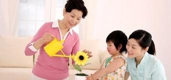 Giúp việc gia đình tại Hà Nội mở ra cơ hội việc làm mới cho phụ nữ