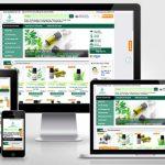 Thiết kế website tại Bình Định Chuyên Nghiệp Bảo Hành Web Trọn Đời
