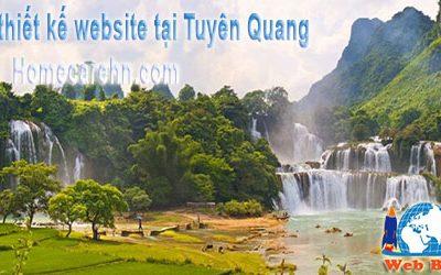 thiết kế website tại tuyên quang chuyên nghiệp