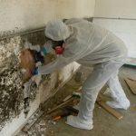Chống thấm nhà vệ sinh tại Mỹ Đức uy tín cho mọi công trình