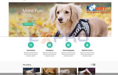 Thiết kế website bán thú cưng chuyên nghiệp