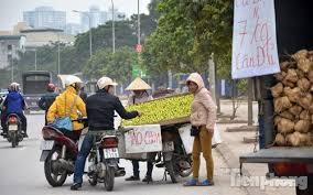 Những người phụ nữ bán hoa quả rong trên đường quốc lộ